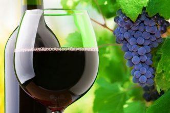 Los médicos recomiendan tomar vino tinto