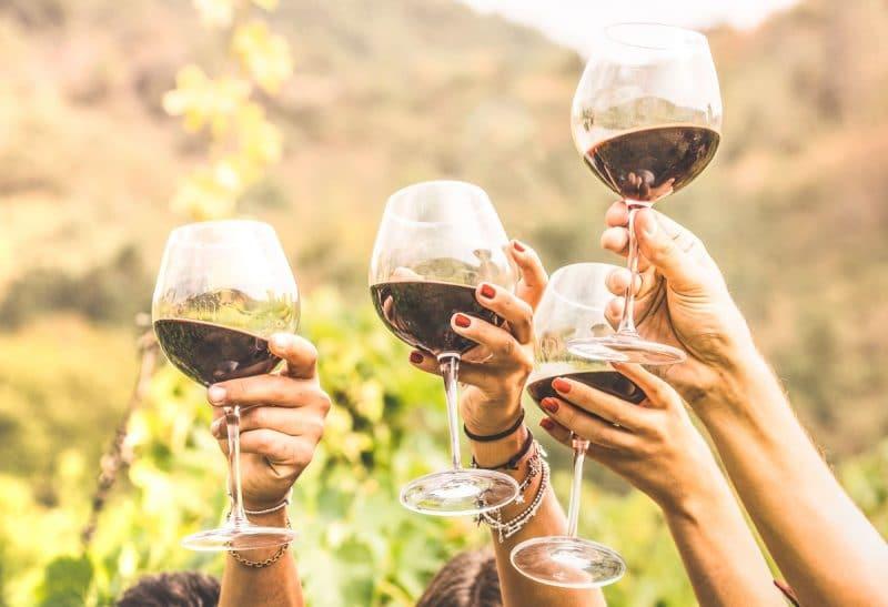 comprar mejor vino tinto español